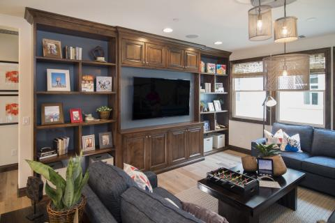 Traditional Stained Entertainment Center with a Dark Grey Painted Back and Open Shelves